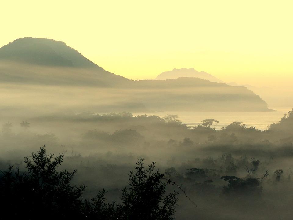 Ultimate Guide to Visiting Ubatuba, Brazil